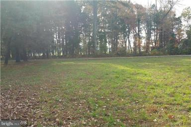 Land for Sale at Mcglue Rd Chaptico, Maryland 20621 United States