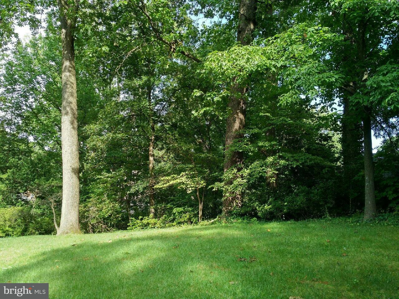 Land for Sale at 3443 N Venice Street 3443 N Venice Street Arlington, Virginia 22207 United States