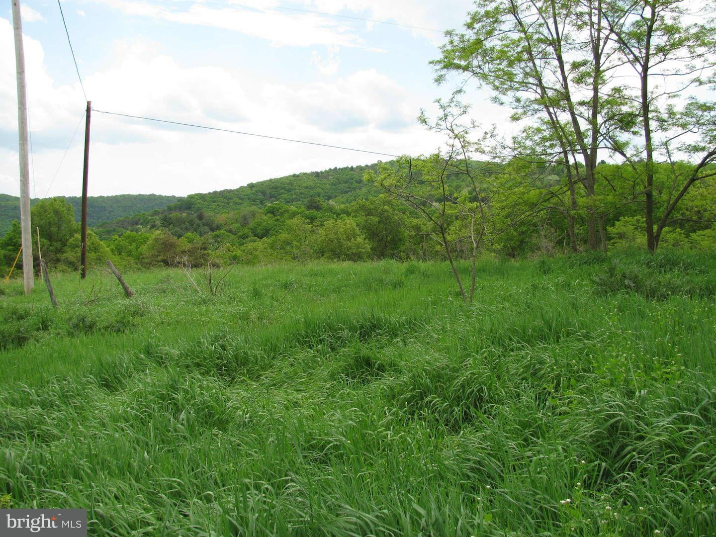 Land for Sale at 1015 Shenandoah Rd Mathias, West Virginia 26812 United States