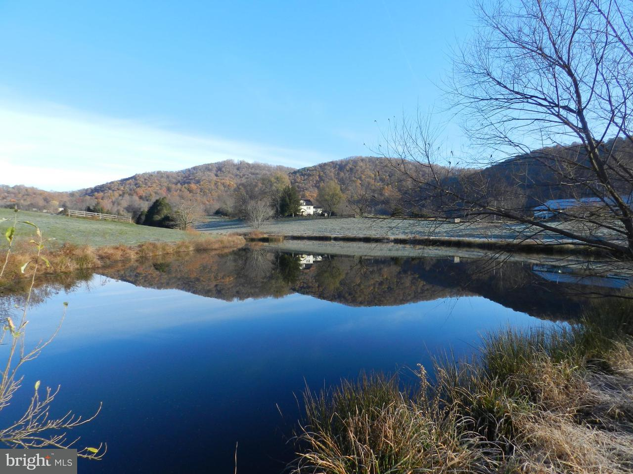 Farm for Sale at 624 Graves Mill Rd Madison, Virginia 22727 United States