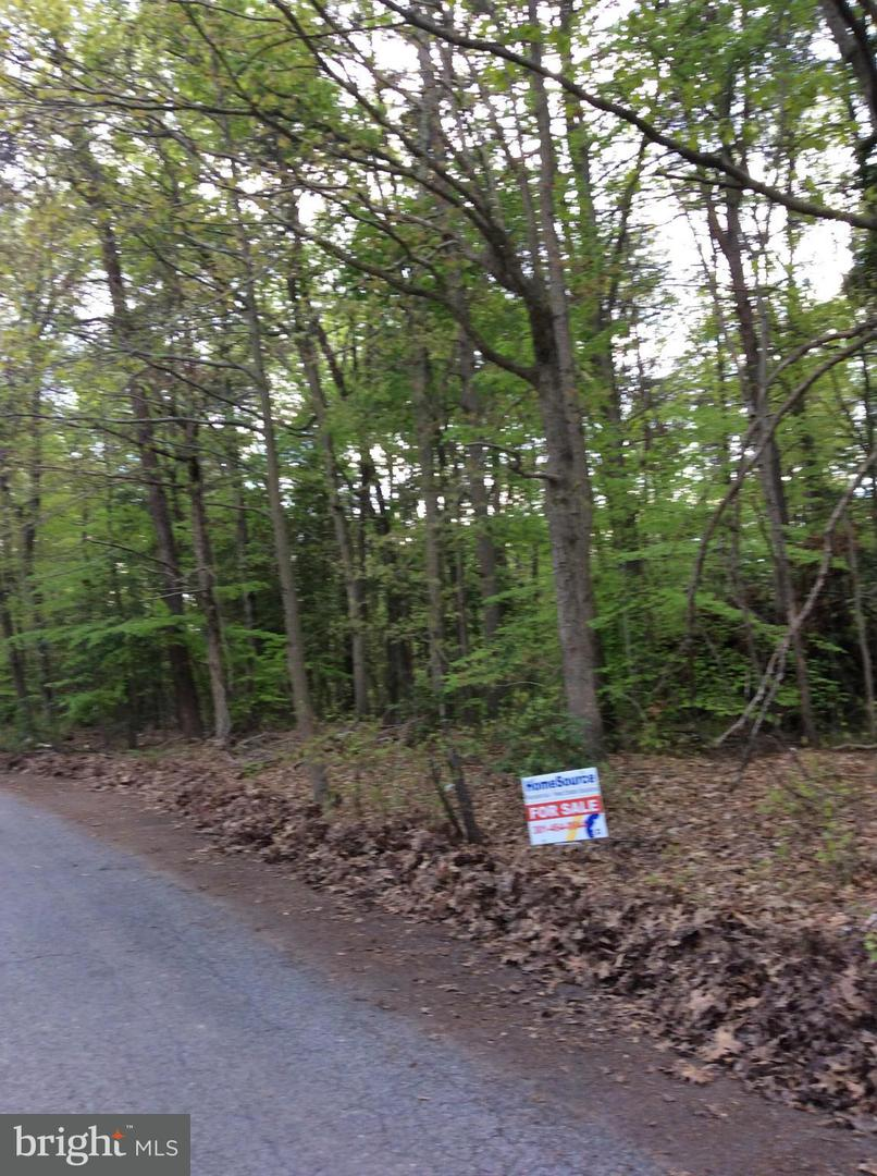 Land for Sale at 11106 Charles Wesley Hall Rd Laurel, Maryland 20708 United States