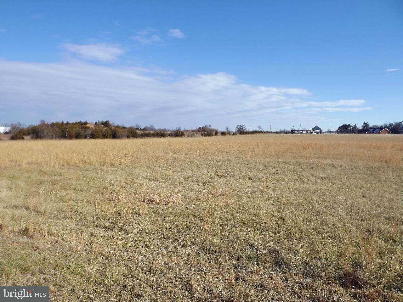 Land for Sale at 0 Beverly Ford Rd Brandy Station, Virginia 22714 United States
