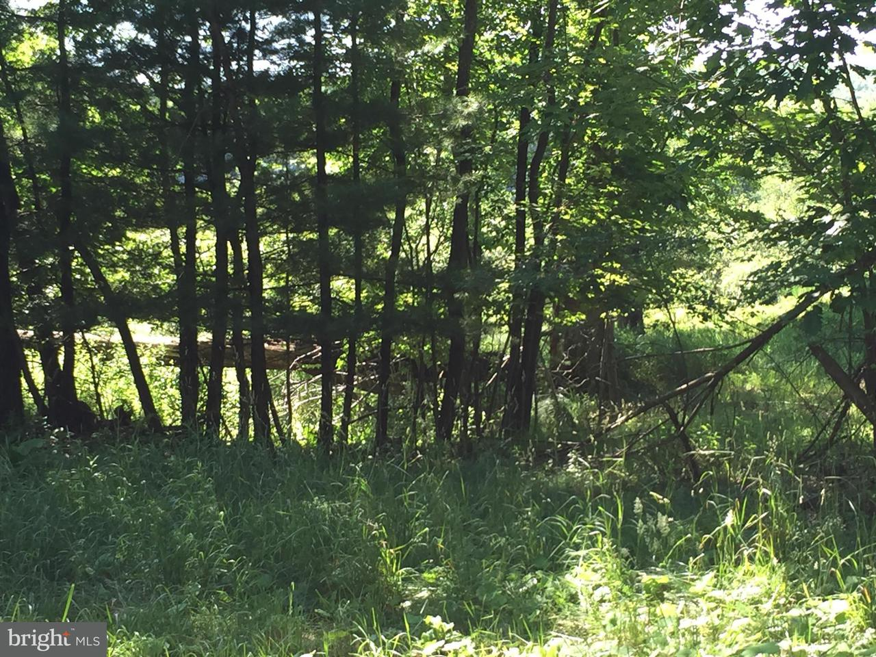 Land for Sale at 3 Paradise Point Rd Oakland, Maryland 21550 United States