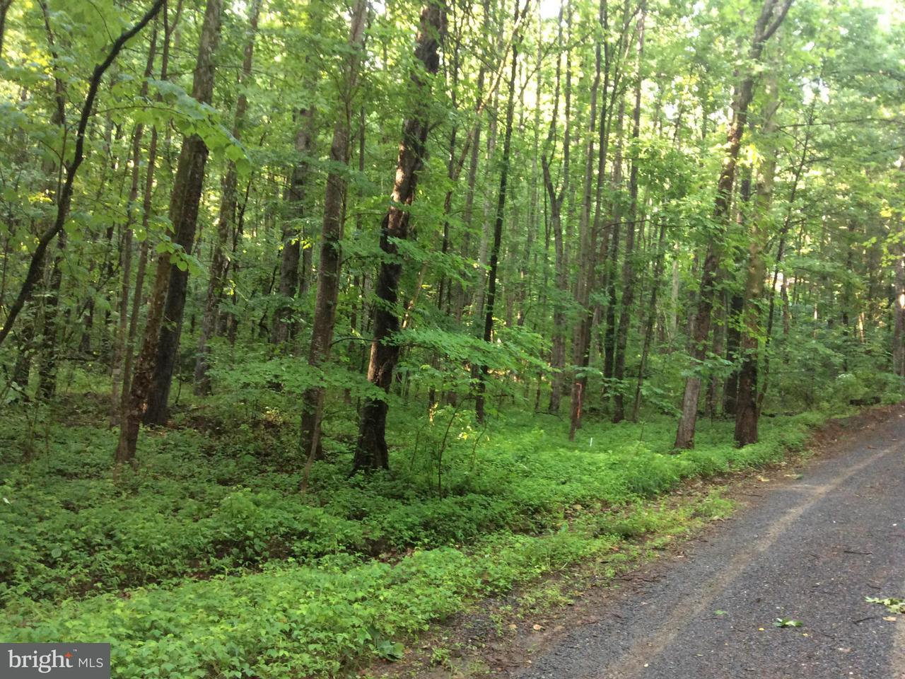 Land for Sale at Meadow View Dr Syria, Virginia 22743 United States