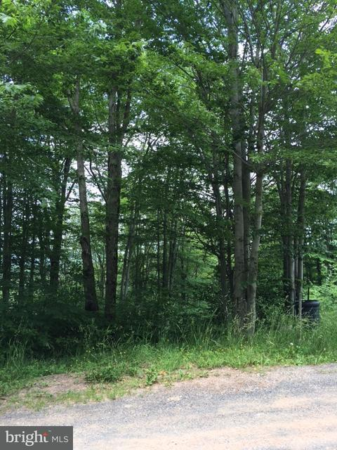 Land for Sale at 89 Mid Mountain Dr Davis, West Virginia 26260 United States