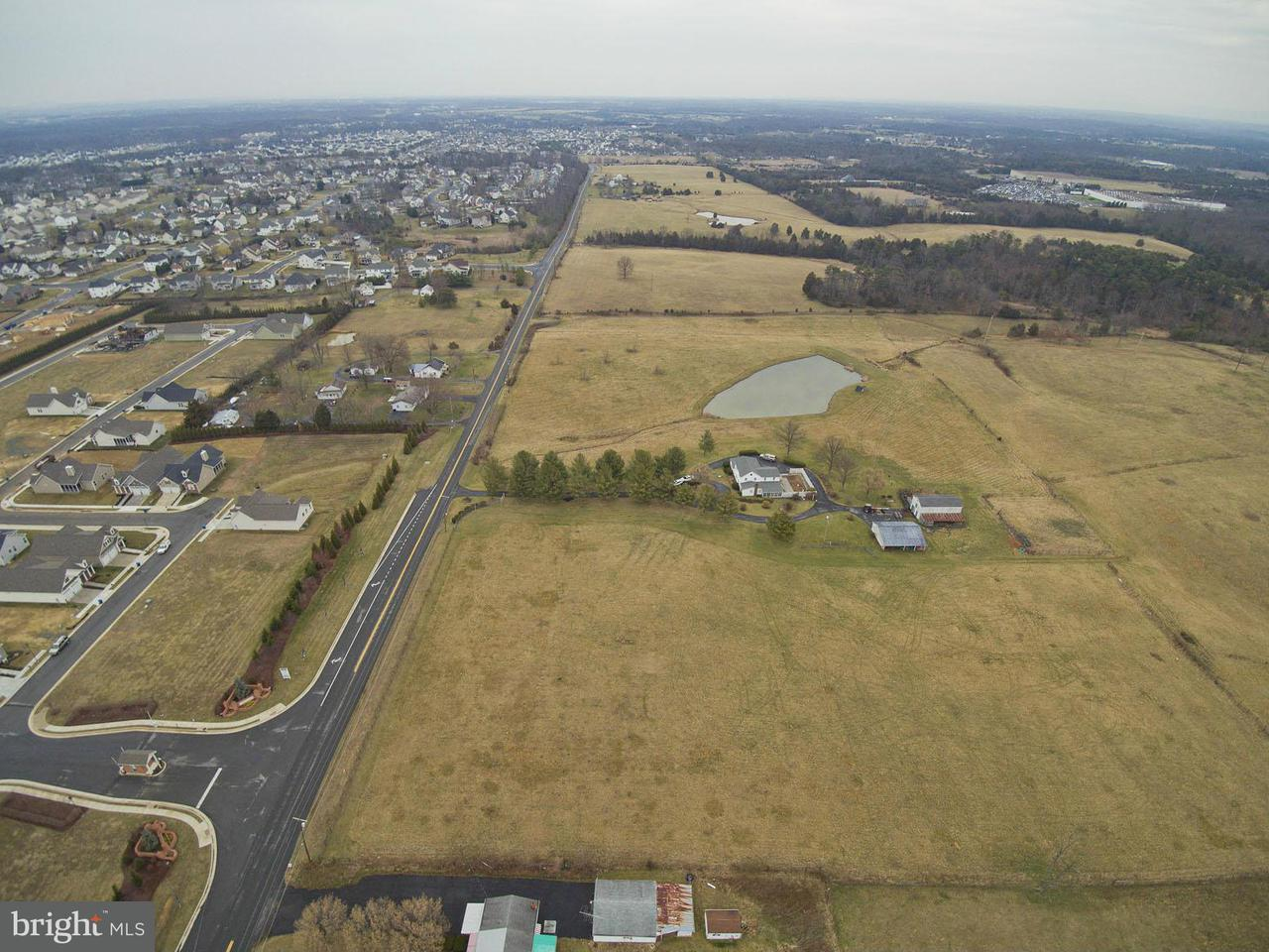 Land for Sale at 471 White Oak Rd White Post, Virginia 22663 United States