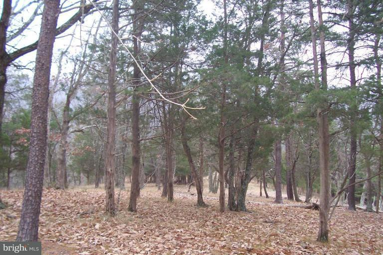 Land for Sale at Hidden Hollow Rd Romney, West Virginia 26757 United States