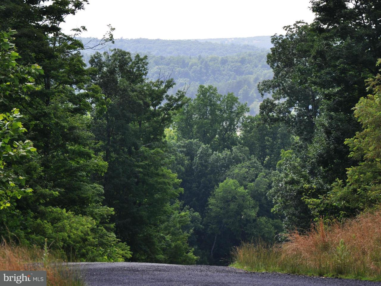Land for Sale at 4 Willa Cather Ln Gore, Virginia 22637 United States