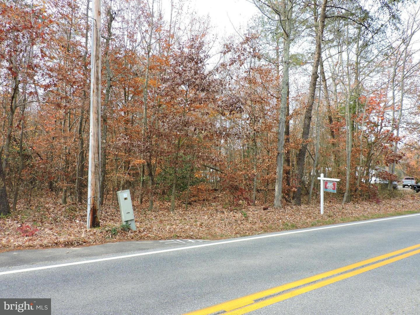 Additional photo for property listing at 0 Bumpy Oak Rd  Indian Head, Maryland 20640 United States