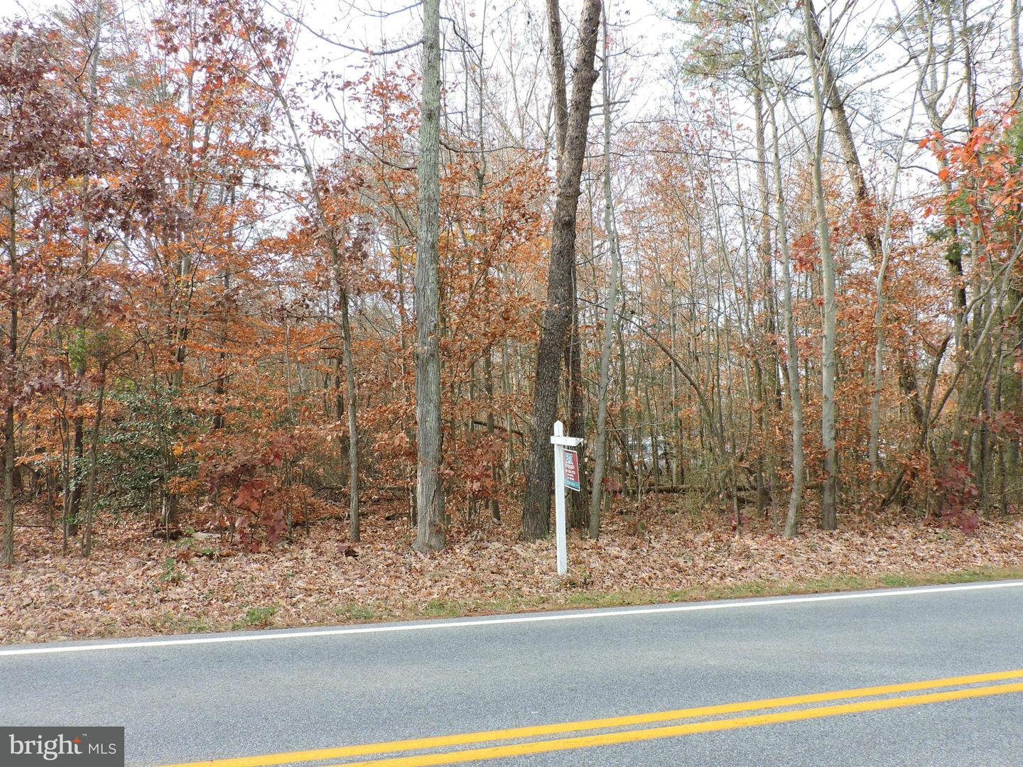 Land for Sale at 0 Bumpy Oak Rd Indian Head, Maryland 20640 United States