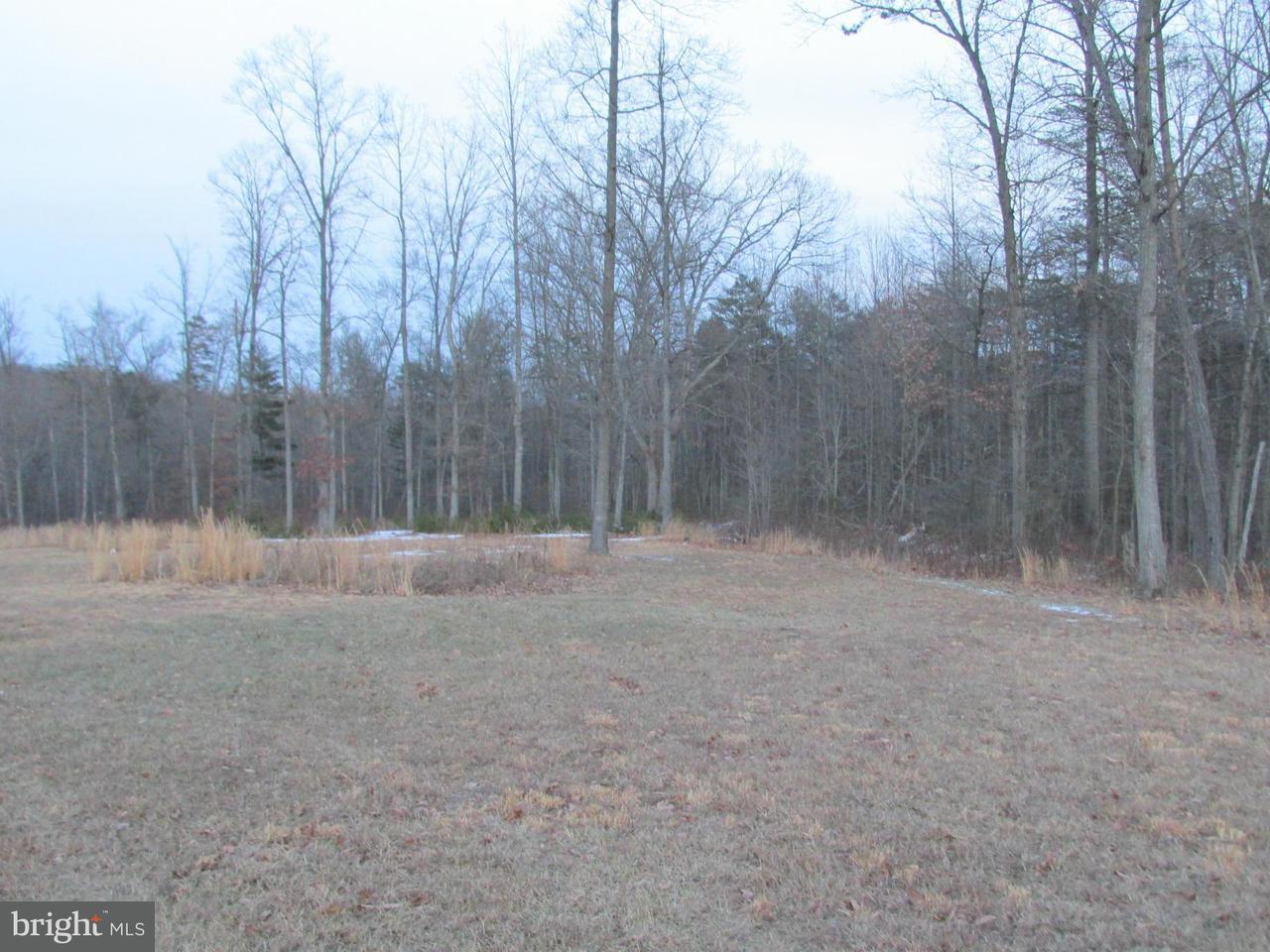 Additional photo for property listing at Nature Ln  Shenandoah, Virginia 22849 United States
