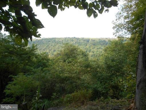 Land for Sale at Kuhn Mine Rd Mount Storm, West Virginia 26739 United States