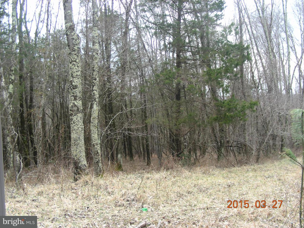 Land for Sale at 0 Old Busthead Rd Broad Run, Virginia 20137 United States