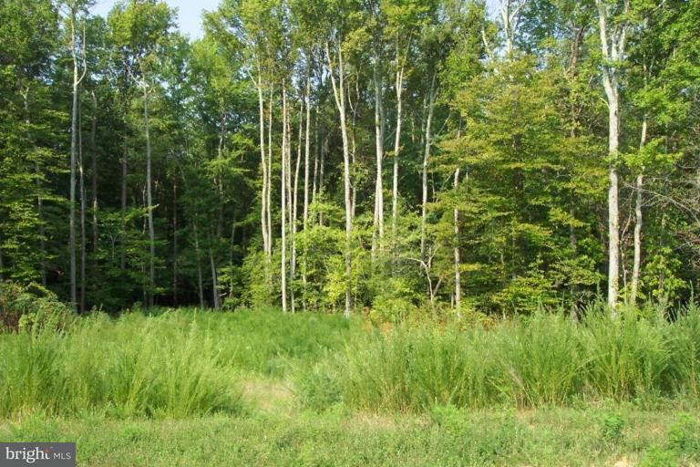 Land for Sale at 15865 Moss Creek Ct Brandywine, Maryland 20613 United States