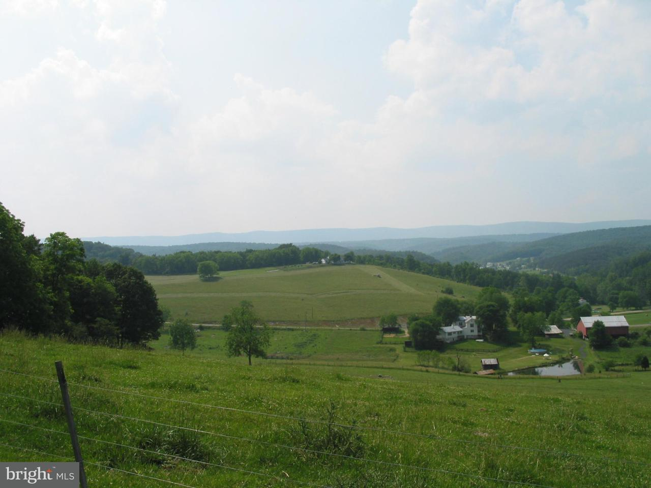 Land for Sale at Senedo Rd Mount Jackson, Virginia 22842 United States