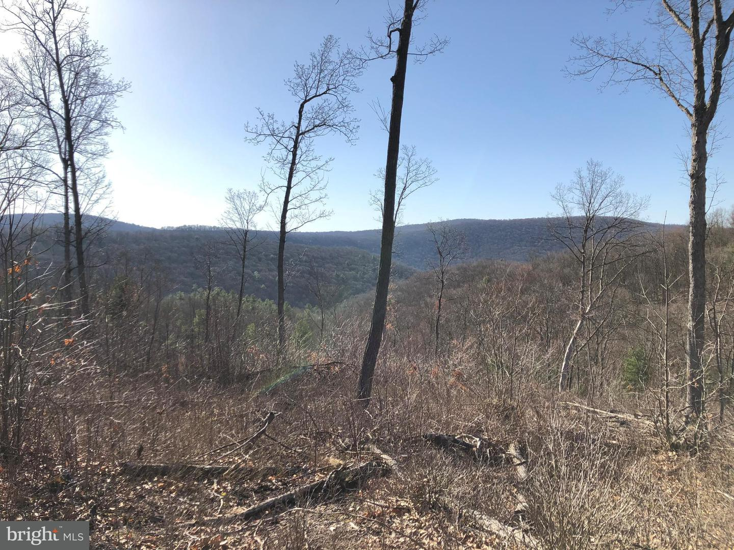 Land for Sale at Lot 4 Polecat Hollow Road Hopewell, Pennsylvania 16650 United States