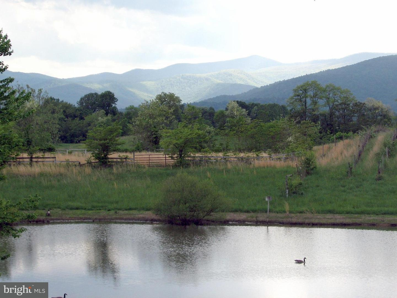 Farm for Sale at 12567 Lee Hwy Washington, Virginia 22747 United States
