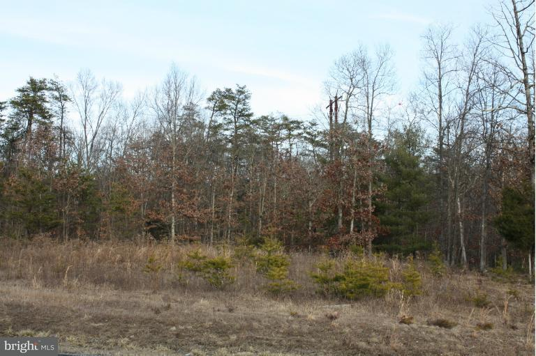 Land for Sale at Oak Hill Court Lot 2 Stephens City, Virginia 22655 United States