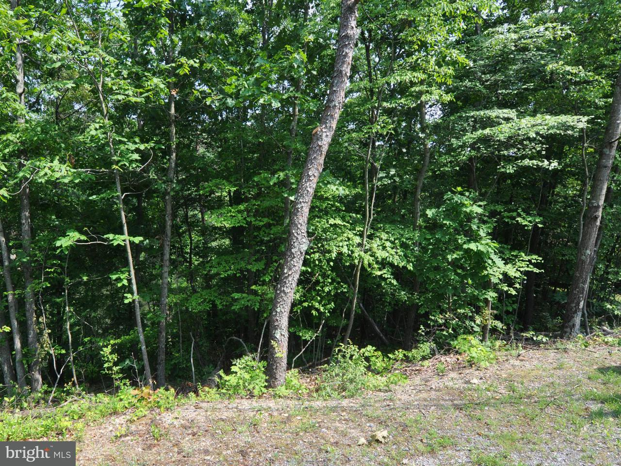 Additional photo for property listing at 1243 Lakeview  Cross Junction, Virginia 22625 United States