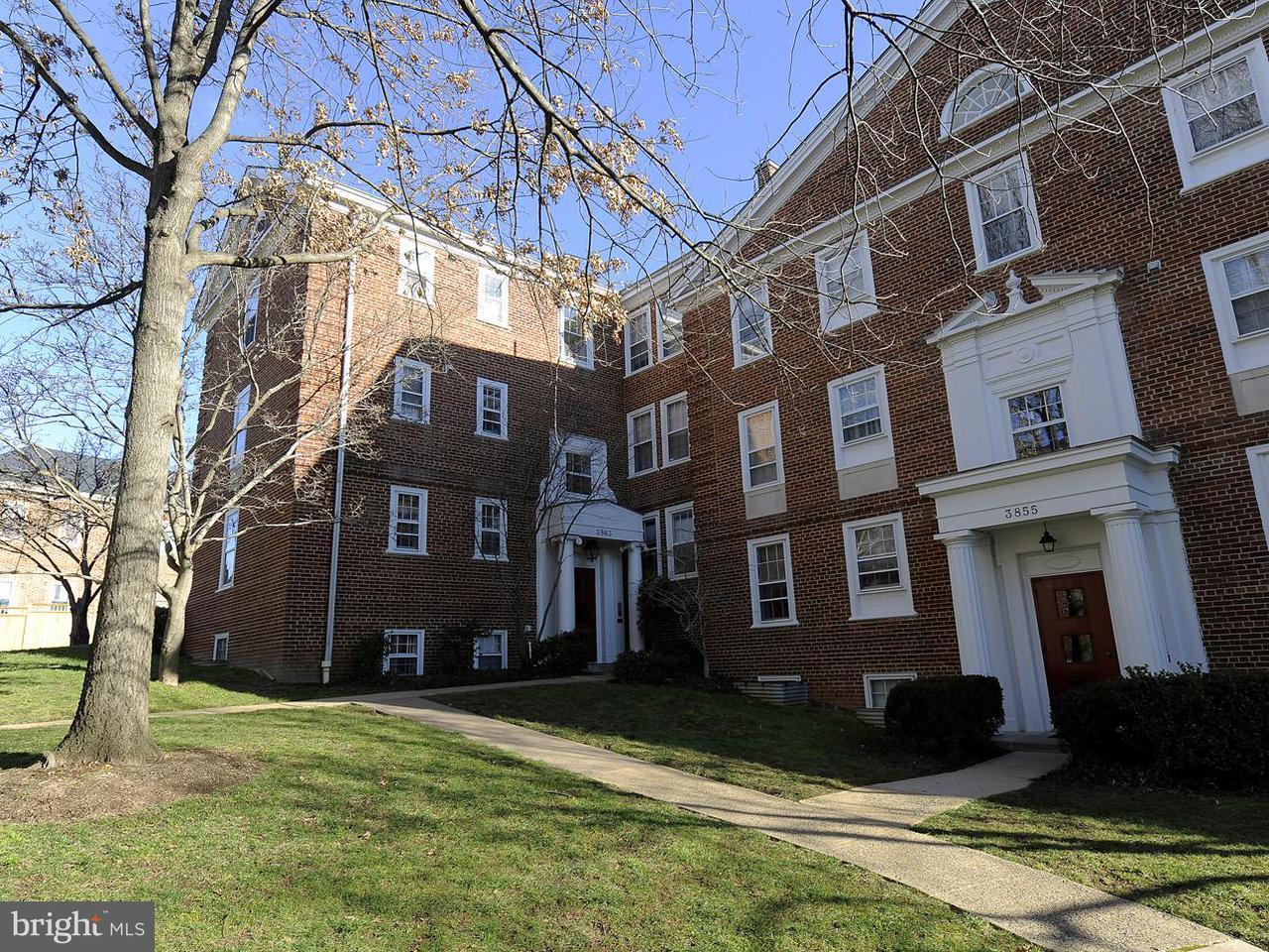 Condominium for Rent at 3863 Rodman St NW #b50 Washington, District Of Columbia 20016 United States