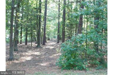 Land for Sale at 14725 Wisteria Dr Issue, Maryland 20645 United States