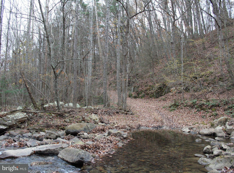 Land for Sale at 450 Old Jones Place Rd Shenandoah, Virginia 22849 United States