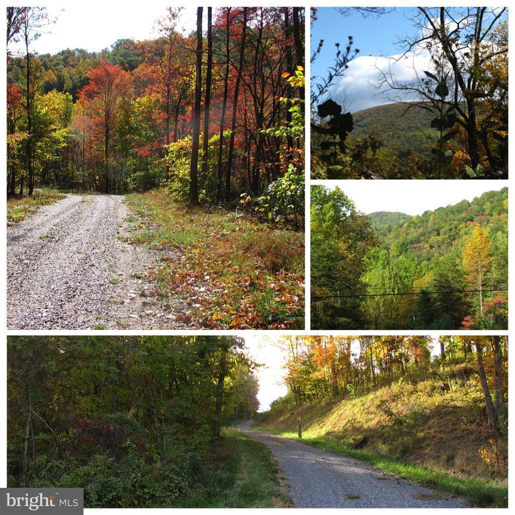 Land for Sale at 252lot #1 Doe Ridge Ln Amherst, Virginia 24521 United States