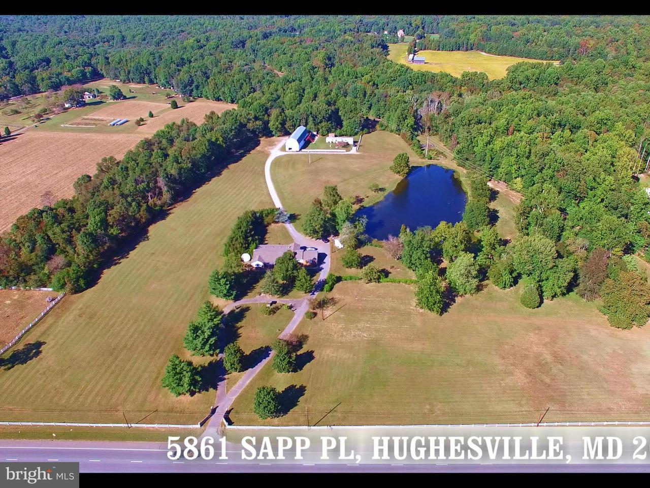 Granja por un Venta en 5861 Sapp Place 5861 Sapp Place Hughesville, Maryland 20637 Estados Unidos