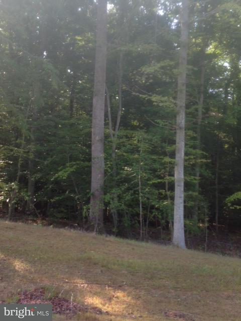 Land for Sale at 4809 Tortoise Ct Waldorf, Maryland 20601 United States