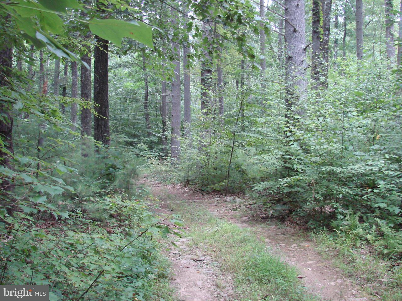 Additional photo for property listing at Printz Mill Rd  Luray, Virginia 22835 United States