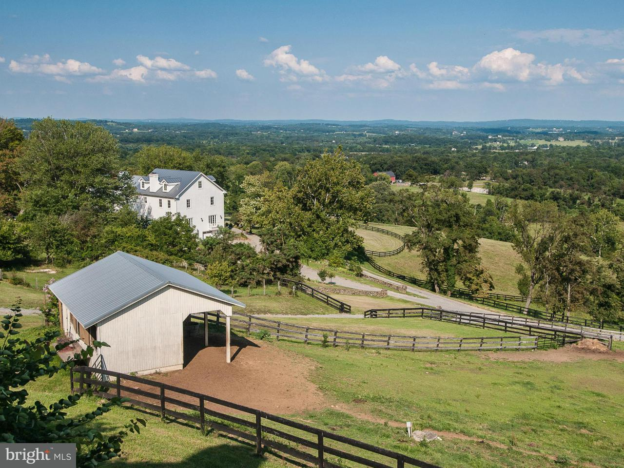 Farm for Sale at 19729 Ridgeside Rd Bluemont, Virginia 20135 United States