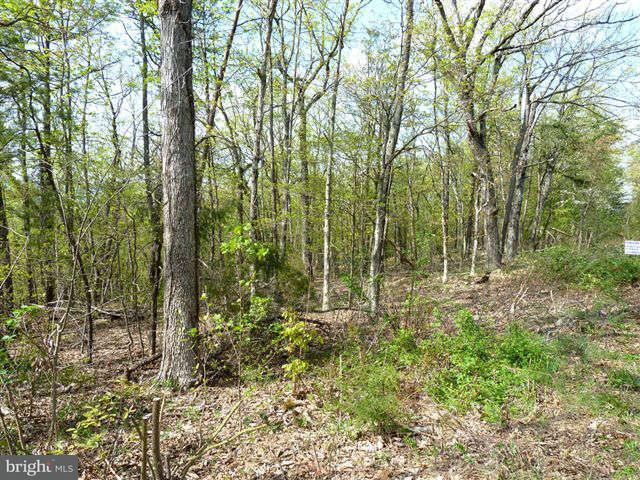 Land for Sale at 0 Supinlick Ridge Rd Mount Jackson, Virginia 22842 United States