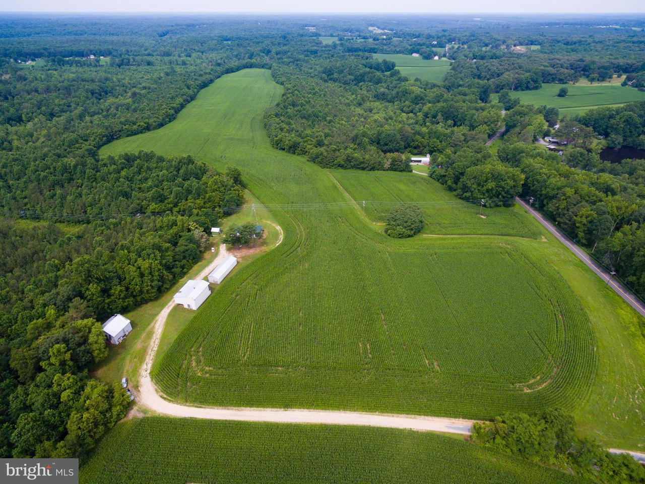 Farm for Sale at 25114 Sparta Rd Milford, Virginia 22514 United States