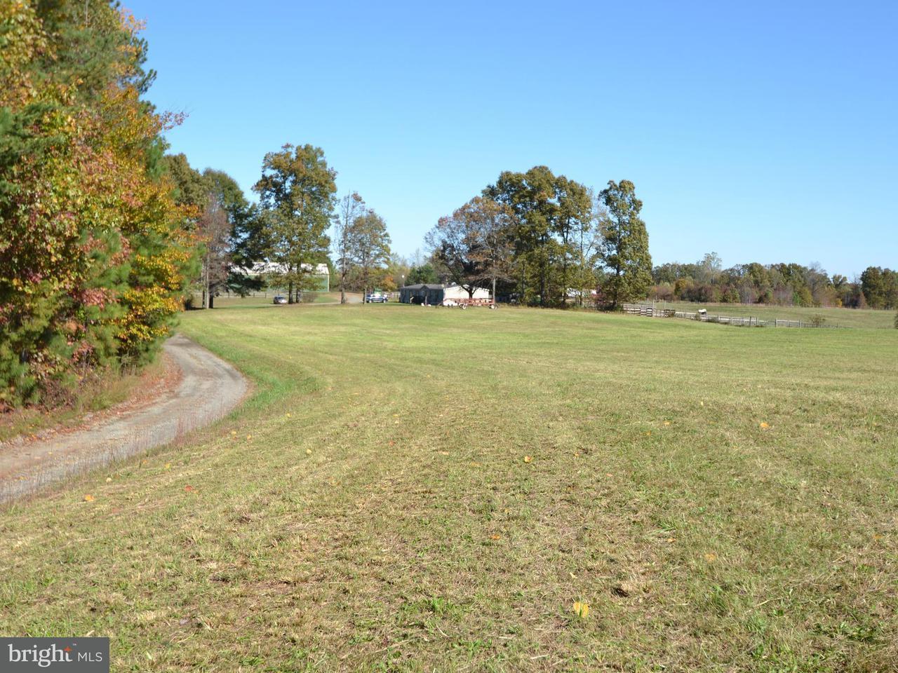 土地 のために 売買 アット 8401 Curtis Lane 8401 Curtis Lane Spotsylvania, バージニア 22551 アメリカ合衆国