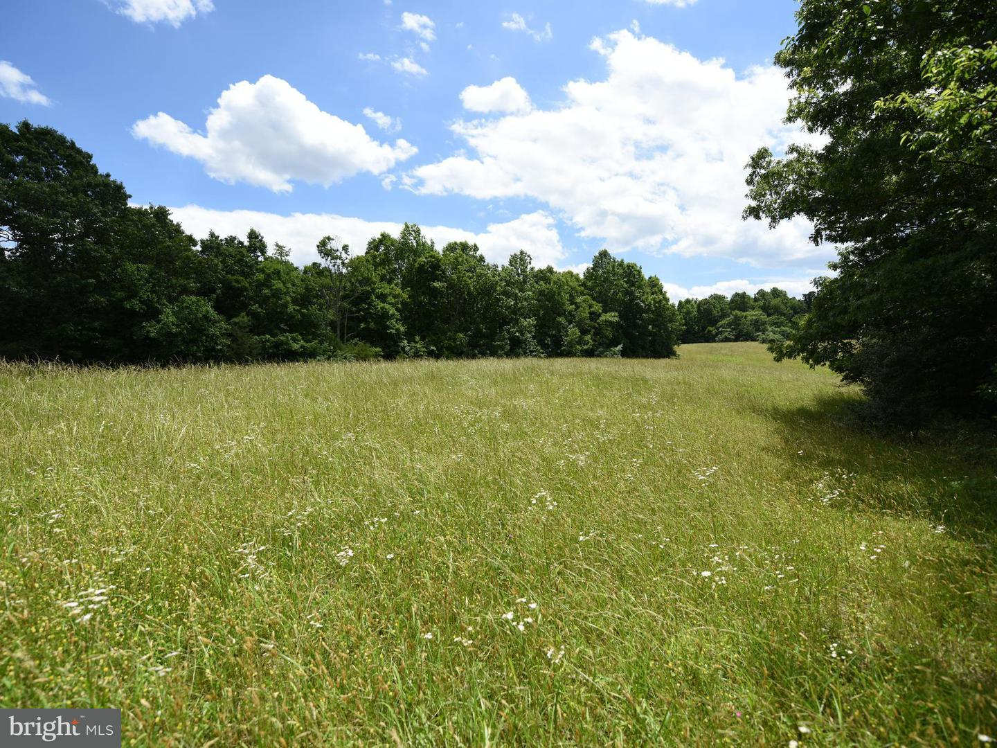 Land for Sale at 0 Richmond Rd Castleton, Virginia 22716 United States