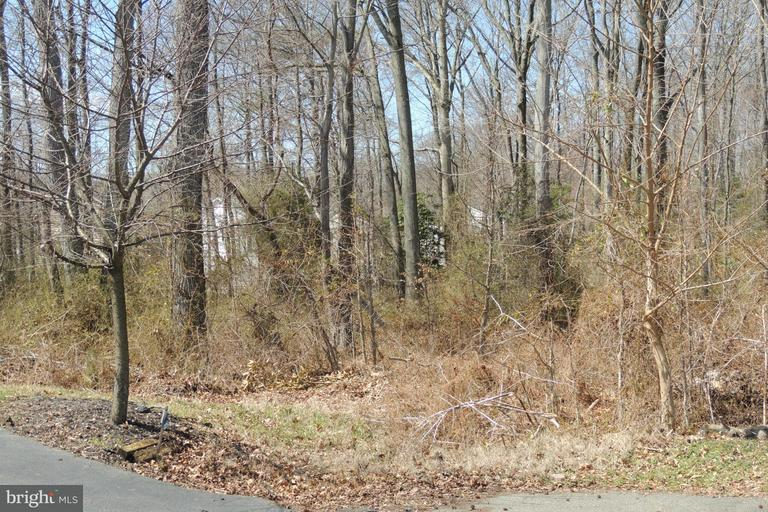 Land for Sale at Woodlawn St Edgewater, Maryland 21037 United States
