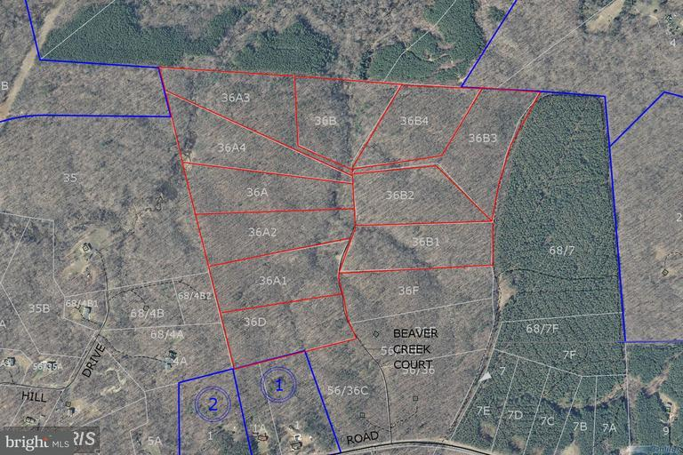 Land for Sale at 1b Beaver Creek Ct Lignum, Virginia 22726 United States