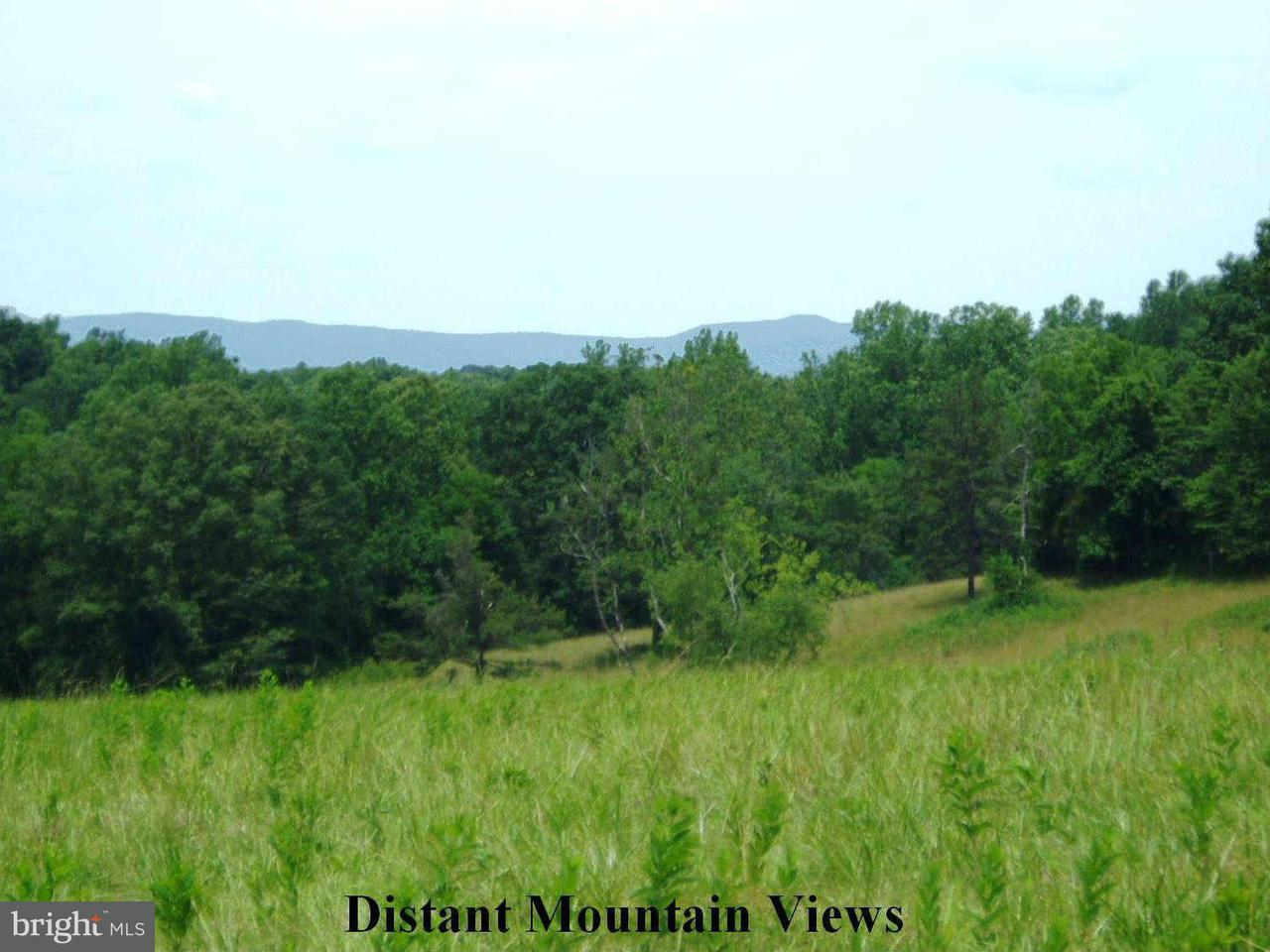 Land for Sale at Beautiful Run Madison, Virginia 22727 United States
