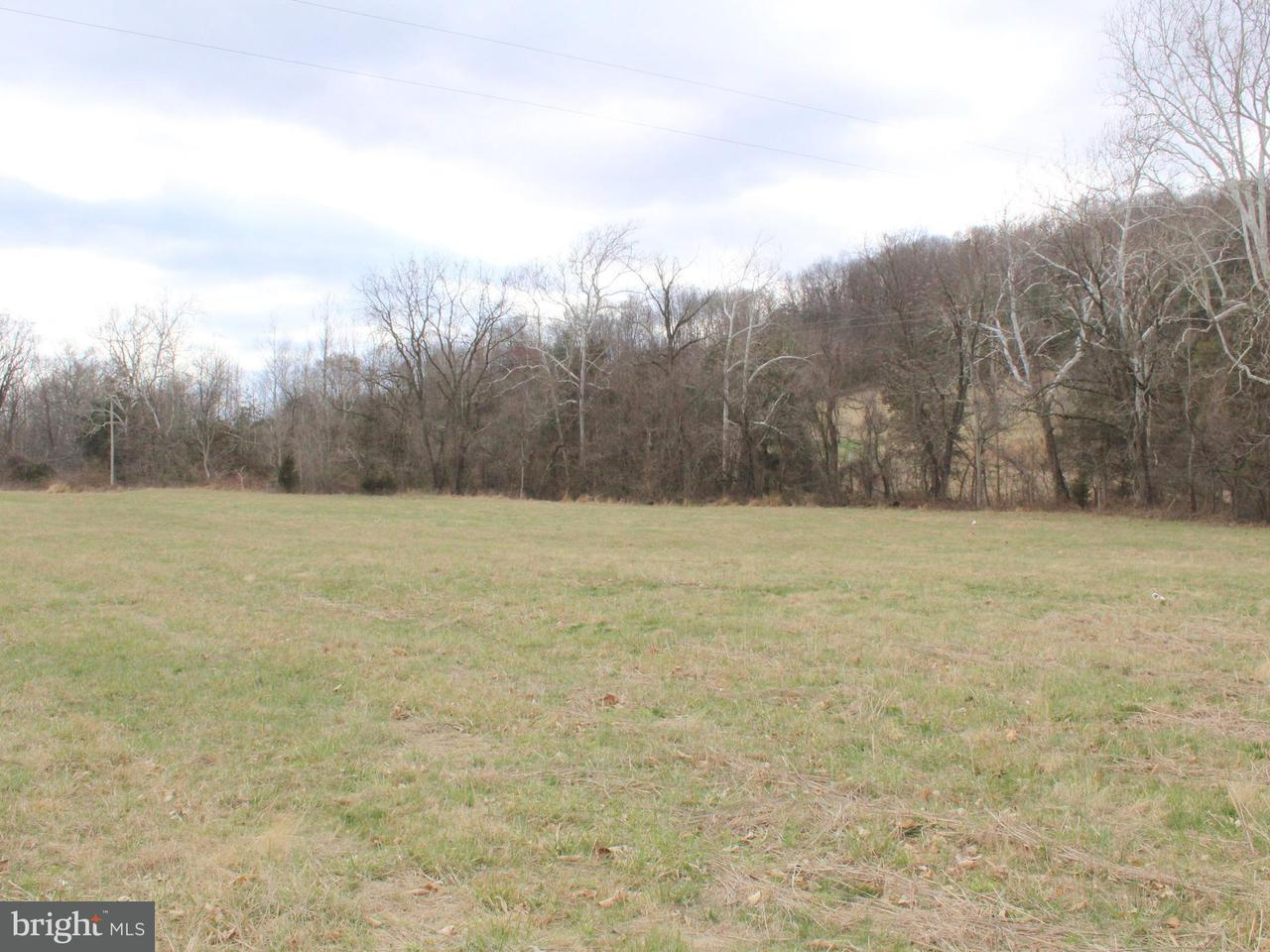 Land for Sale at Ida Rd Luray, Virginia 22835 United States
