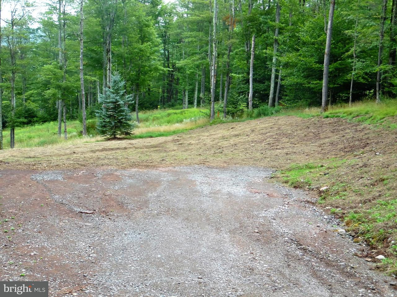 Land for Sale at 90 Mid Mountain Dr Davis, West Virginia 26260 United States