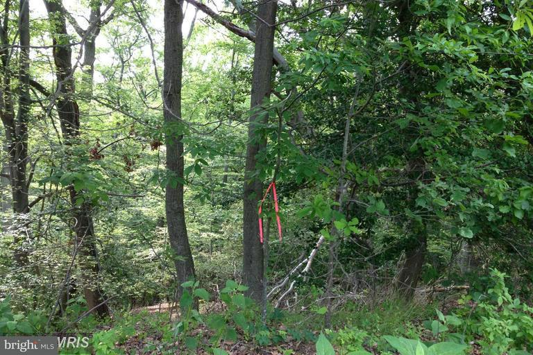 Land for Sale at 0 No On File Hague, Virginia 22469 United States