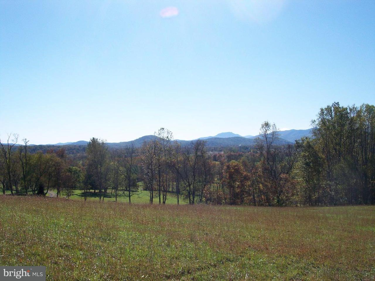 Land for Sale at Tiger Valley Road Tiger Valley Road Washington, Virginia 22747 United States
