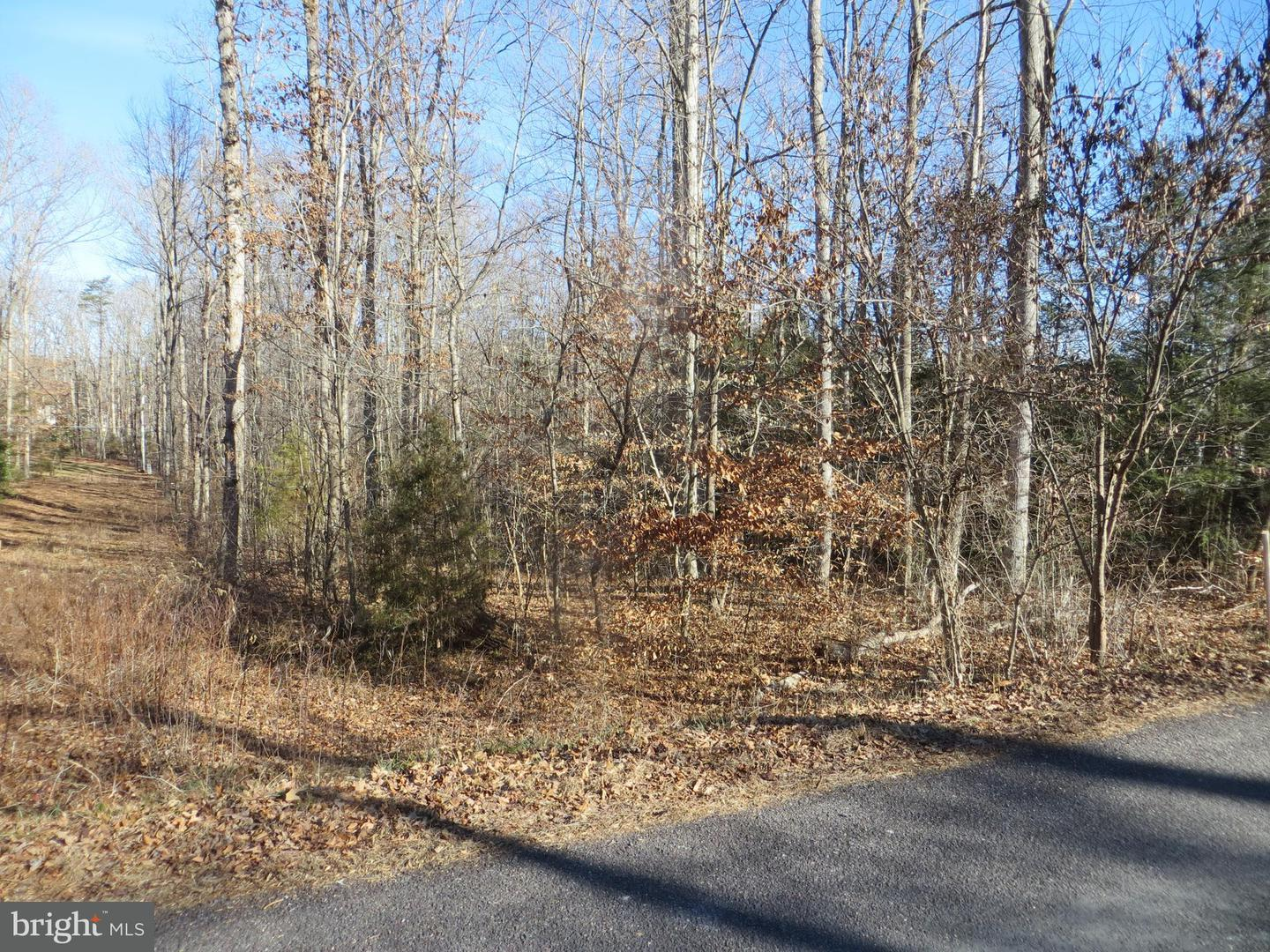 Land for Sale at 122 Washington St Locust Grove, Virginia 22508 United States