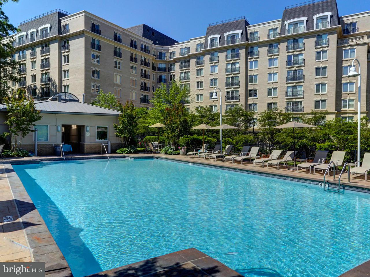 Additional photo for property listing at 5 Park Pl #414 5 Park Pl #414 Annapolis, Maryland 21401 United States