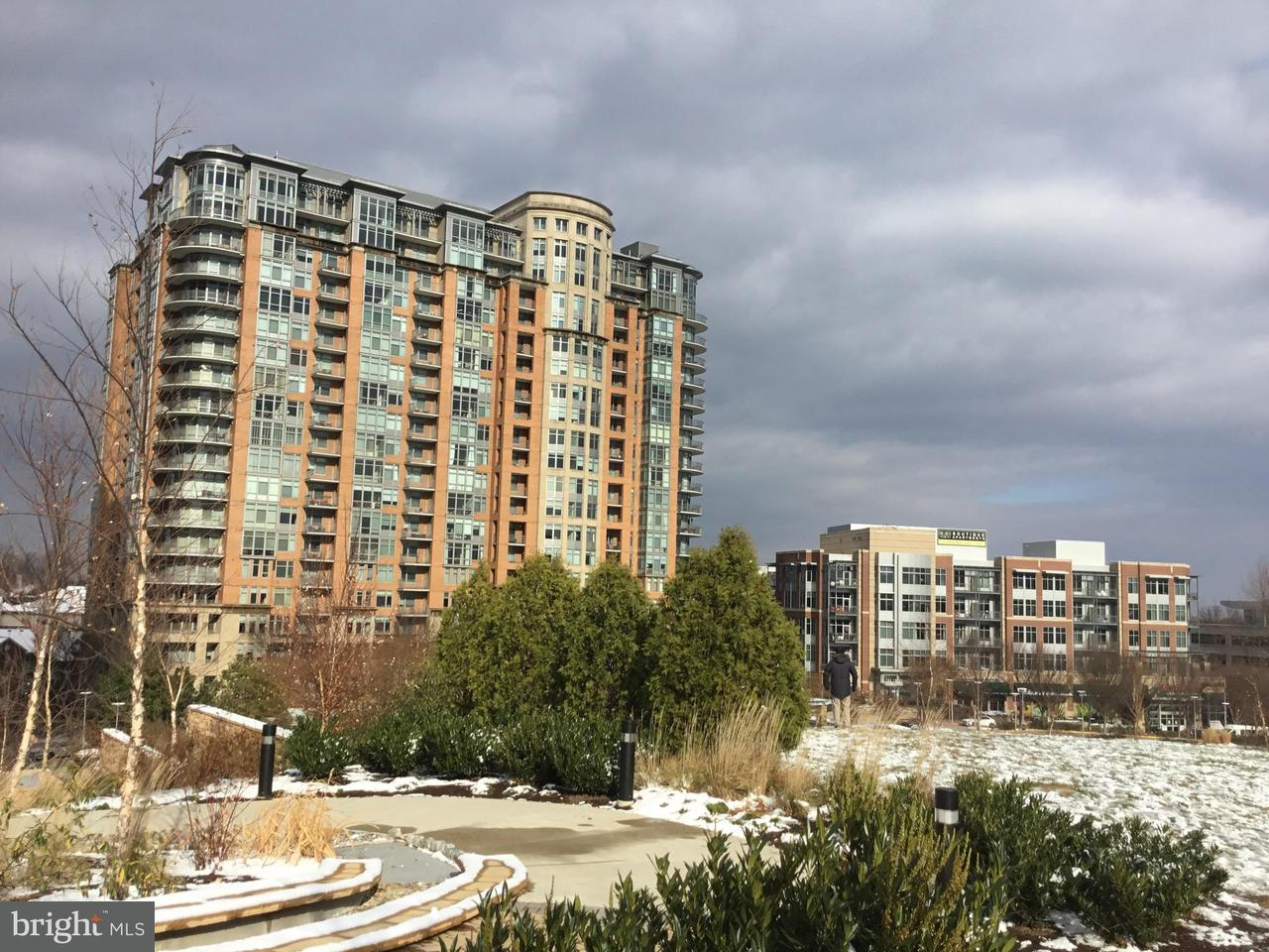 Condominium for Sale at 8220 Crestwood Heights Dr #712 8220 Crestwood Heights Dr #712 McLean, Virginia 22102 United States