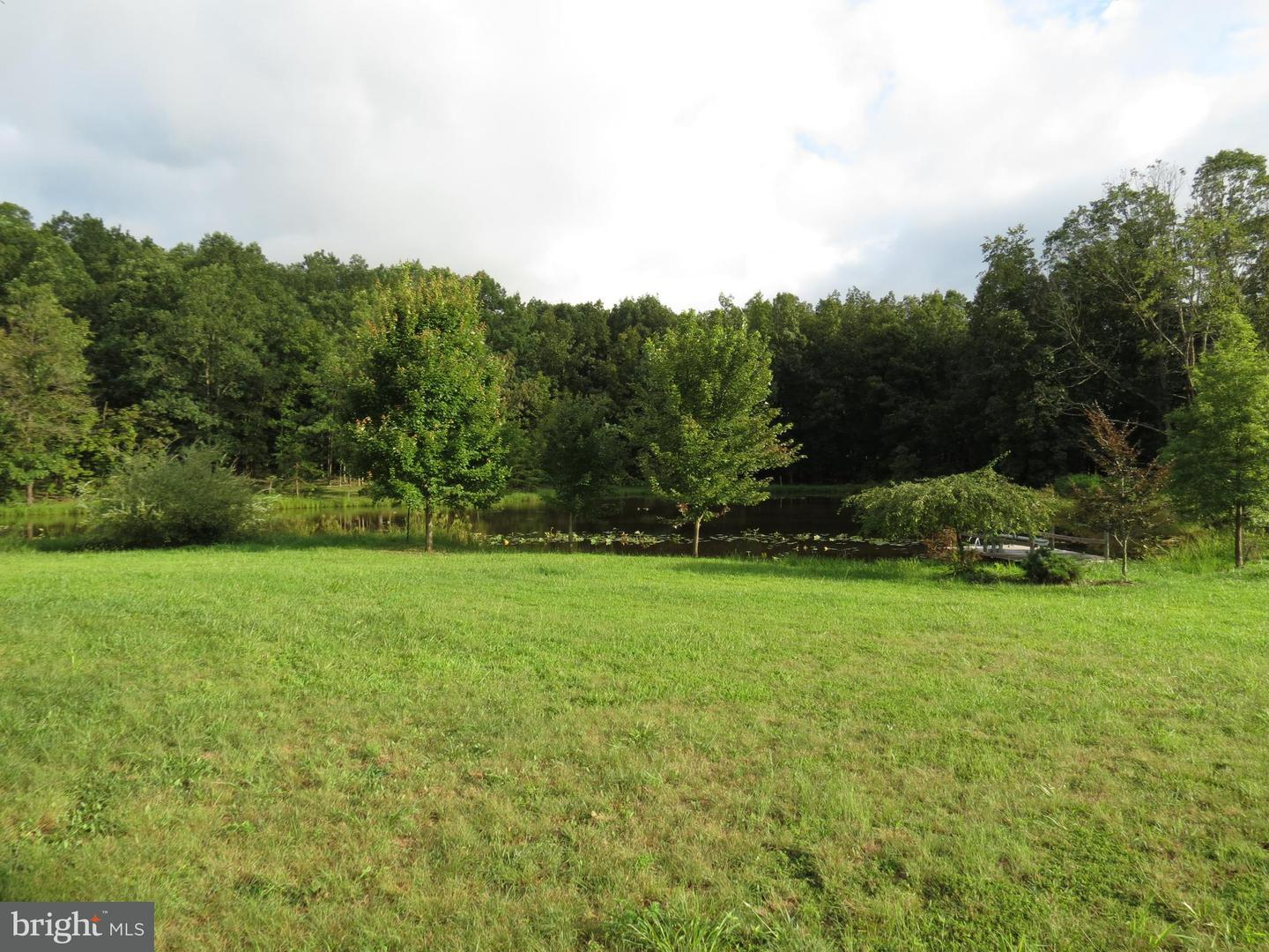 Land for Sale at Off Wisteria Ln Old Fields, West Virginia 26845 United States