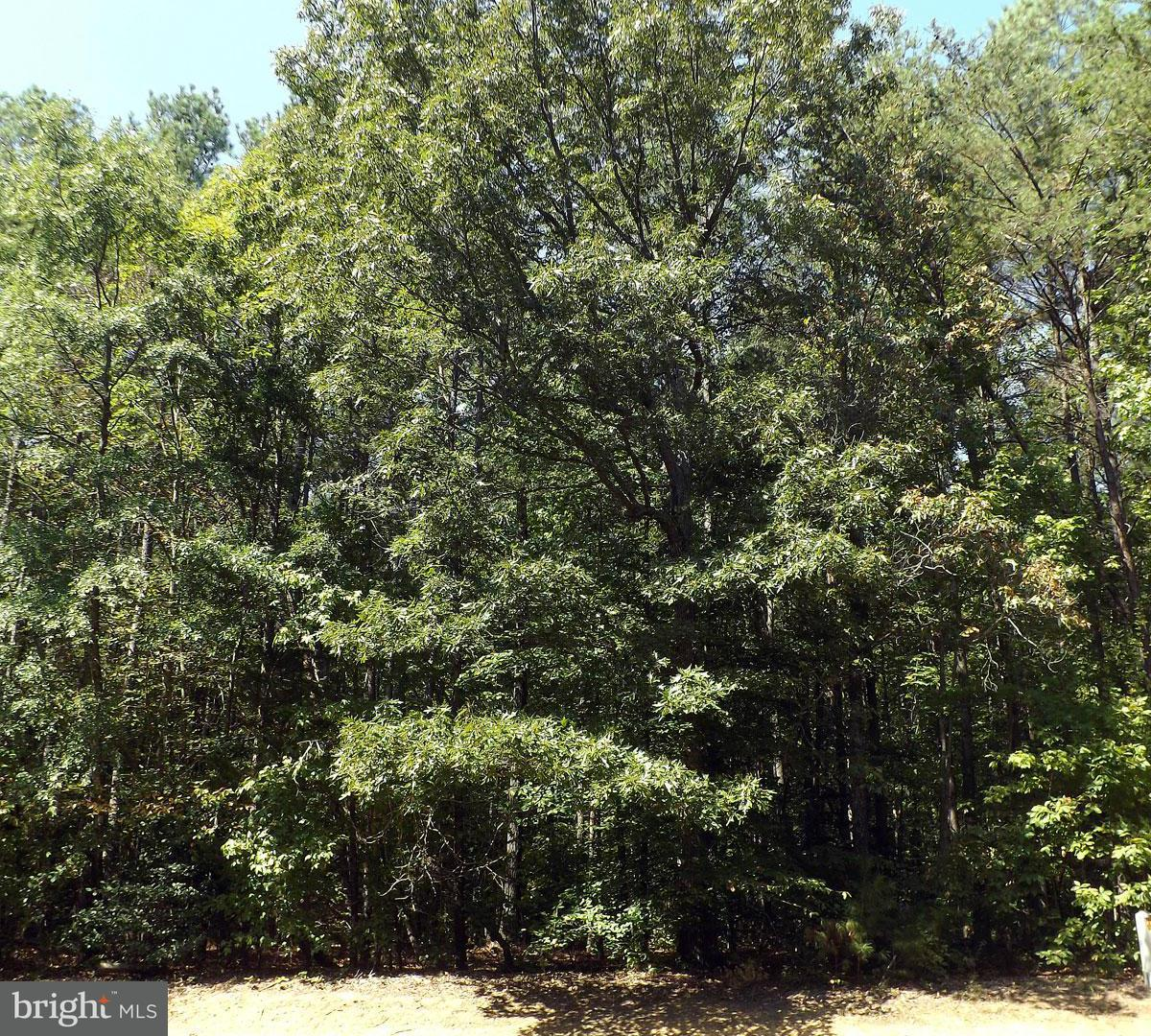 Land for Sale at 117 Spruce Dr Mineral, Virginia 23117 United States