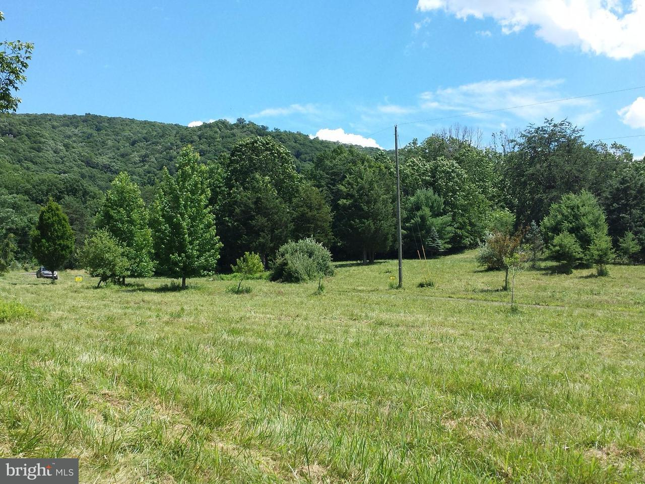 Land for Sale at West Brook Road Lot D Old Fields, West Virginia 26845 United States