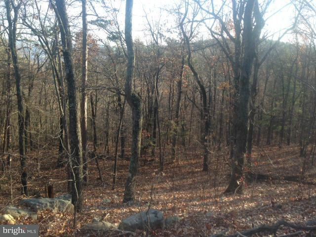 Land for Sale at Panorama View Dr. Stanley, Virginia 22851 United States
