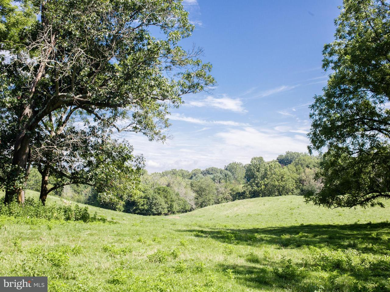 Land for Sale at Maidstone Rd Rectortown, Virginia 20140 United States